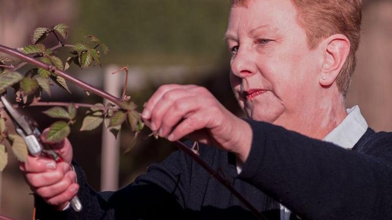 Noelle Weatherley pruning