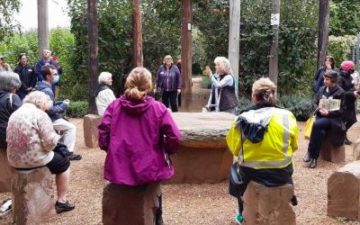Event highlight: Tour of Alowyn Gardens & Lunch